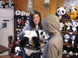 英拉游四川亲抱萌态小熊猫